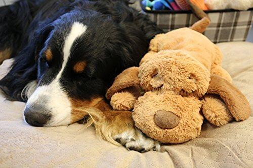 SmartPetLove-Snuggle-Puppy-Behavioral-Aid